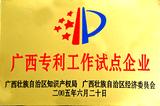 广西专利工作试点企业—桂人堂集团