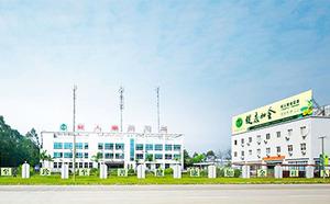 Guangxi GuiRen Tang Golden Camellia Tea Industry Group Co., Ltd