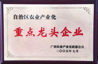 自治区农业产业化重点龙头企业—桂人堂集团